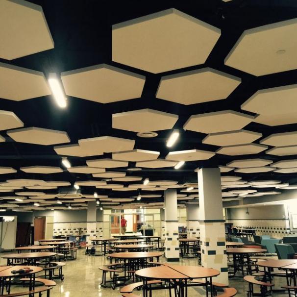 Acoustic Ceiling Cloud